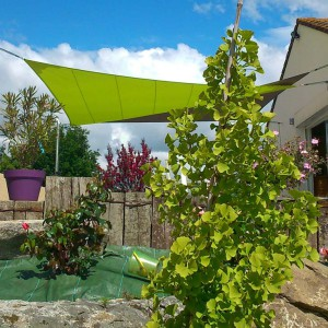 Voile d'ombrage Angers sur terrasse – 49